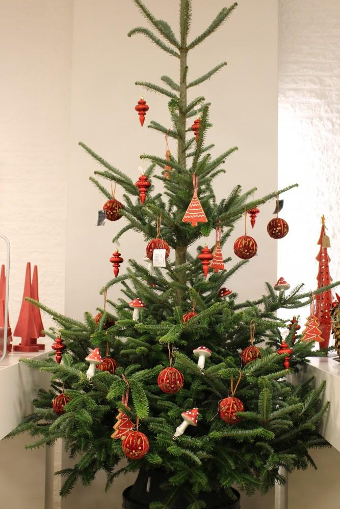 Vanaf 2 Dec Kerstbomen