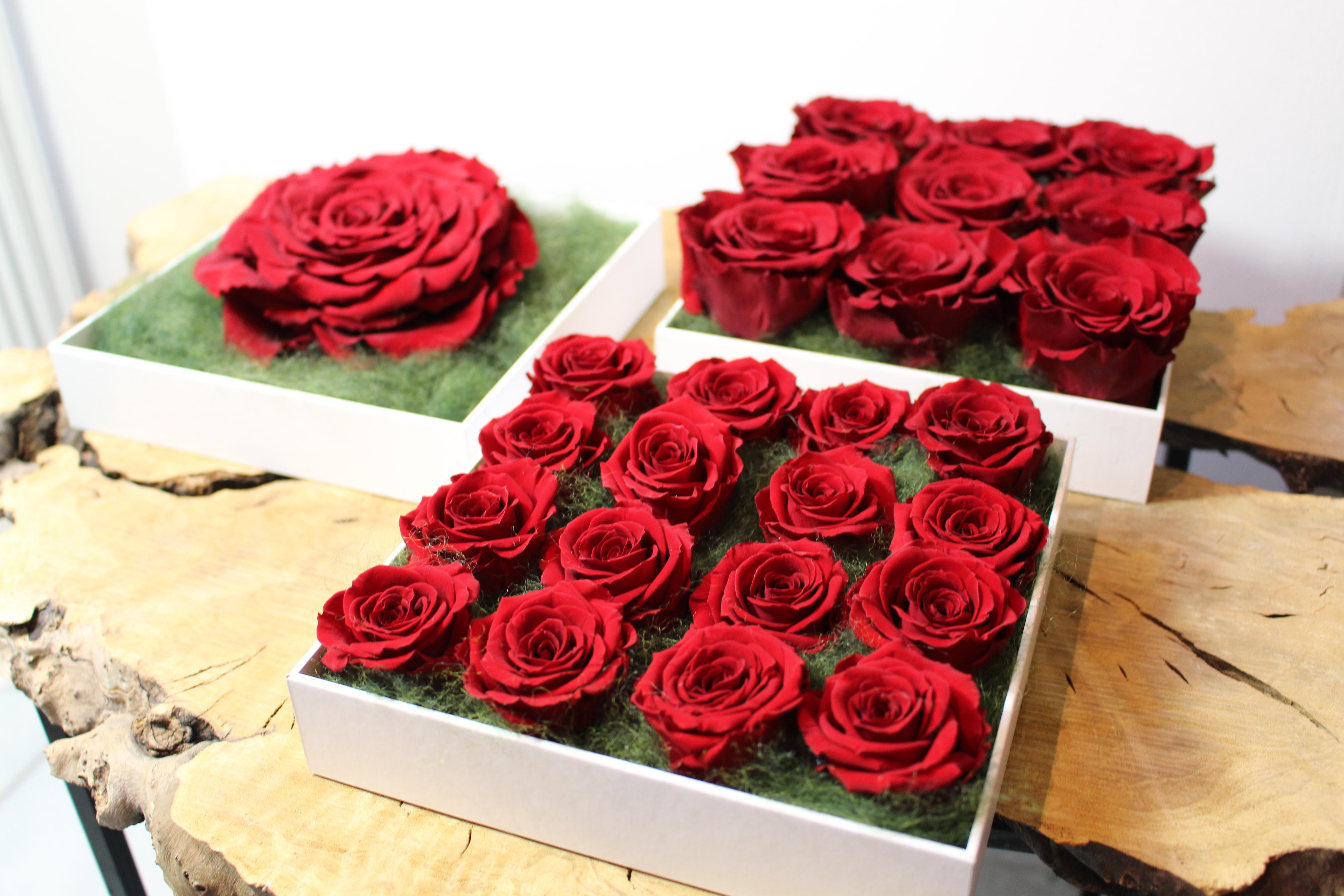 rozen box